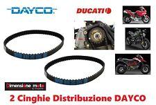 2190 - 2 CINGHIE Distribuzione DAYCO per DUCATI MULTISTRADA 1000 DS dal 2003 >