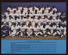 1978 Los Angeles Dodgers Team Photo