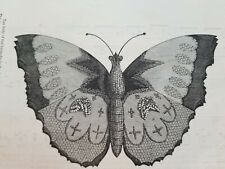 Antique 1868 Victorian BUTTERFLY PEN-WIPER (Fountain) Penwiper GODEYS LADY Print