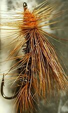 STIMULATOR DRY FLY BROWN / ORANGE # 12 FRONTIER FLY FISHING FLIES TROUT PEACOCK