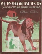 What D'ye Mean You Lost Yer Dog, Dr. Jenks photo, 1913 vintage sheet music