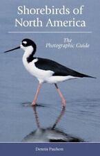 Shorebirds of North America: The Photographic Guide