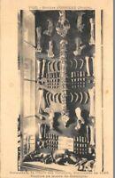 GROTTES D'OSSELLE - Ossements de l'Ours des Cavernes 1823 (musée de Besançon)