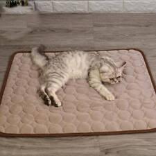 Pet Supplies Pet Ice Pad Dog Pad Dog Kennel Dog Pad Pet Nylon Pad W
