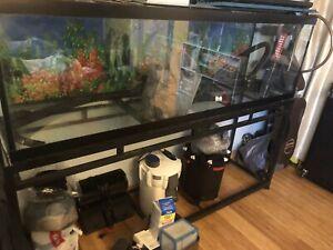 Schreibunterlage 670x435 mm Motiv Aquarium