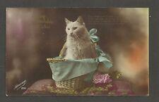 Vintage Antique Birthday Postcard. Cat in Basket