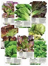 Lettuce Lovers Seed Collection (8 Individual Seed Packets) Non-Gmo