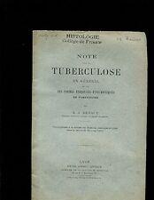 M. J. Renaut,Tuberculose En General et Sur Ses Formes Fibreuses