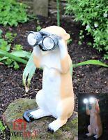 Solar Powered Decorative Garden Ornament meerkats Light Up with binoculars