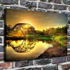A big tree Paintings HD Print on Canvas Home Decor Wall Art Pictures posters