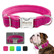 Personalized Dog Collar Plush Padded Reflective Warm Dog Collar with Nameplate