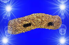Nager Zubehör ?? GRASTUNNEL.?? Spielzeug Nagerröhre Heu Höhle Hamster Haus Mäuse