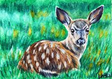 ACEO, Fine Art, Print, Fawn, Wildlife, Original, By Artist DLarson