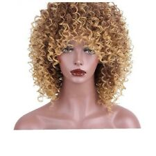 Synthetic Kinky Curly Brown Blonde Ombre Wig 14 Inches