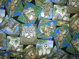 OWLS BLOCKS REALISTIC TREE OWL GREEN BLACK COTTON FABRIC FQ OOP
