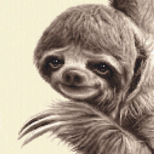 Three Toed SLOTH ~ Full Counted cross stitch kit  by Jann Designs
