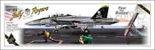 """F/A-18F """"Super Hornet"""" US Navy - VFA-103 Jolly Rogers - Airplane Profile"""