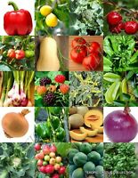 ORGANIC FRUITS & VEGETABLE MIX, heirloom garden non gmo assorted seed -150 seeds