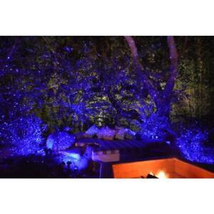 Blisslights Spright Black Indoor/Outdoor Firefly Laser Light Show