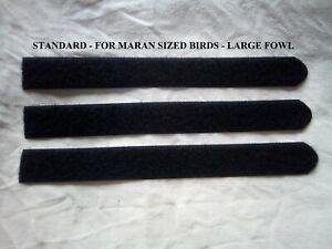 Cockerel-Rooster quiet crow collars-economy SET of 3 for £3.55-standard size-UK