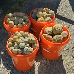 Pool Ball Sized Crack Your Own Geodes