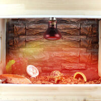 60W 75W 100W Infrared Basking Spot Lamp Single Max Heat Reptile Bulb Spot Light