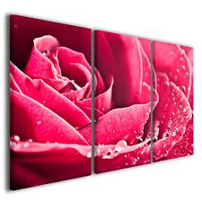 QUADRI MODERNI BEAUTIFUL ROSE I STAMPE SU TELA CON FIORI E ROSE COLORATE