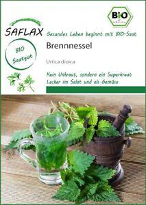 Saflax 15321 Brennnessel (Bio-Brennesselsamen)