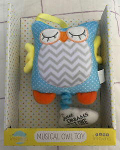 Tiny Treasures Musical Owl (With twinkle twinkle little star melody)