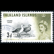 FALKLAND ISLANDS 1960-66 3d Magellan Goose. Bird. SG 197. Fine Used. (AM417)