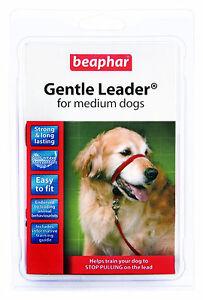 Gentle Leader Medium Red