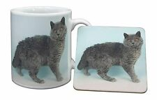 Silver Grey 'Blue' Selkirk Rex Cat Mug+Coaster Christmas/Birthday Gift, AC-110MC
