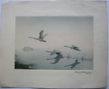 Karl Ewald Olszewski (1884-1965) tre volanti cigni acquaforte orig 1970