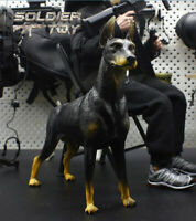 """Free Shipping 1/6 Scale Dobermann Dog Model Animal for 12"""" Action Figure Toy"""
