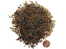 Regenwurmkokons 1000 Stück, Kompostwürmer, Gartenwürmer