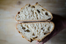 sourdough bread starter yeast from san francisco wharf recipes included NEW