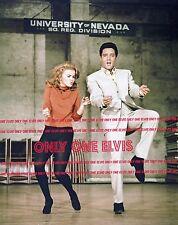 ELVIS PRESLEY in the Movies 1964 8x10 Photo VIVA LAS VEGAS dancing ANN-MARGRET