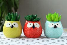 3pc/set Cartoon Owl-shaped Flower Pot for Succulents Fleshy Plants Flowerpot