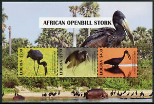 Liberia Birds on Stamps 2019 MNH African Openbill Stork Hippos Storks 3v M/S