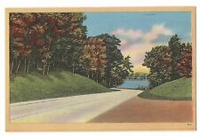 The LONG and WINDING ROAD Leads to Body of Water Fall Autumn Vintage Postcard