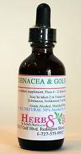 Herbs by Merlin ECHINACEA & GOLDENSEAL ( Immune ) TINCTURE Organic  2 Fluid Oz