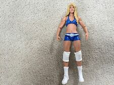 WWE Mattel Basic 18 Kelly Kelly Divas Figure, Elite, Flashback, WWF, WCW