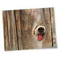 "8x10"" Prints(No frames) - Dog in the Fence  #14153"