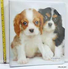LTB: CLASS ACT KEITH KIMBERLIN BINDER PUPPIES DESIGN