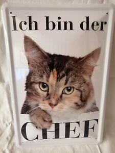 Blechschild 20 x 30 cm  aus Metall  schöne Tiger Katze ICH BIN DER CHEF