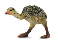 CollectA 88461 Ostrich Chick Walking - Realistic Toy Bird Wildlife Replica - NIP