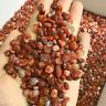 1/2lb Tumble Polished Fire red  Agate Jasper Quartz Bulk Small Size  Rough