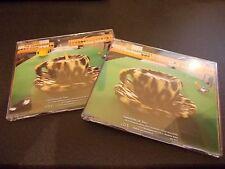 THE CRANBERRIES ANIMAL INSTINCT 2 CD SINGLE SET