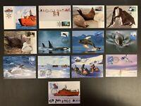 Australian Antarctic Territory, Lot of 13 Official Maxi Cards, Circa 1991-1998