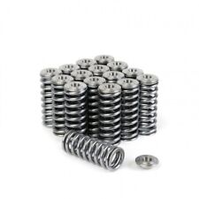 Skunk2 Alpha Valve Springs + Titanium Retainer for Honda D-Series SOHC VTEC